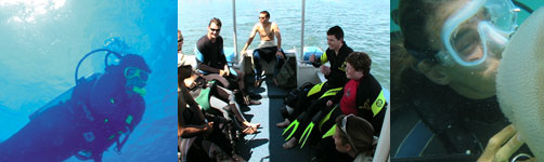 Scuba Diving from Boat Gold Coast
